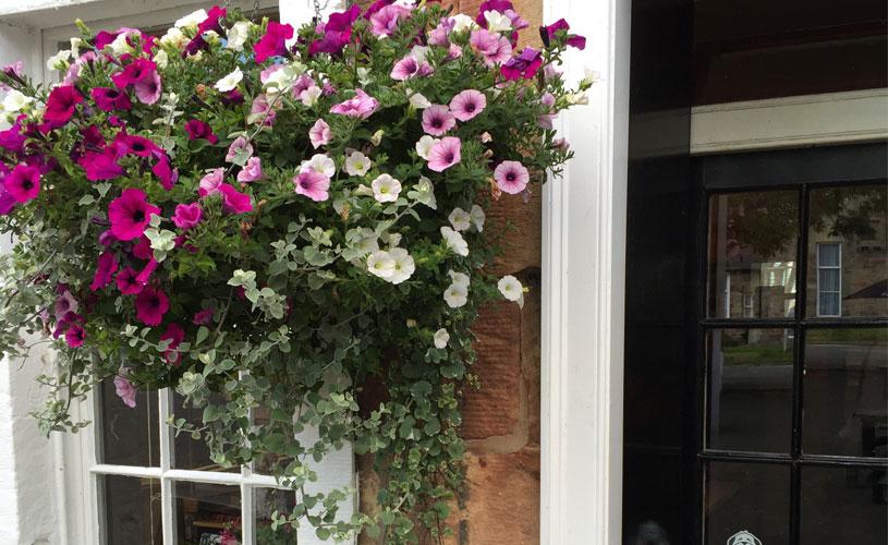 flower basket at entrance