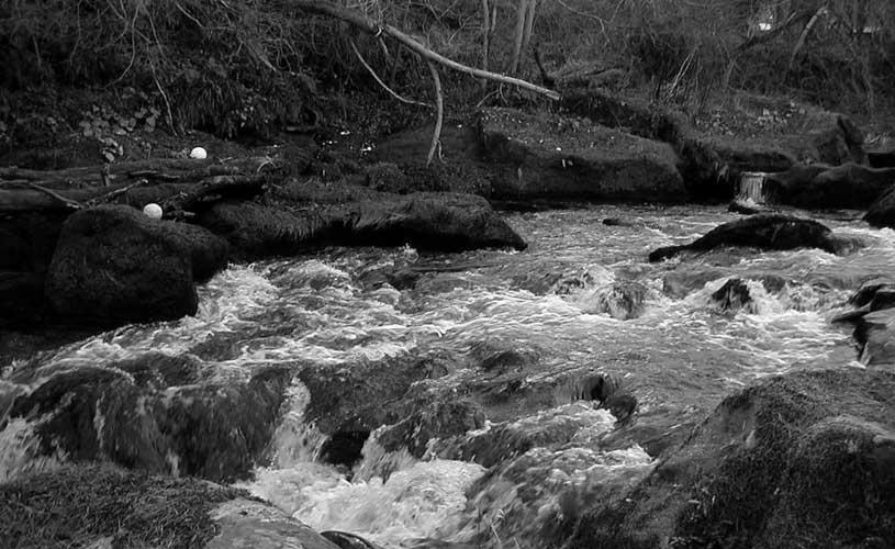 roslin stream